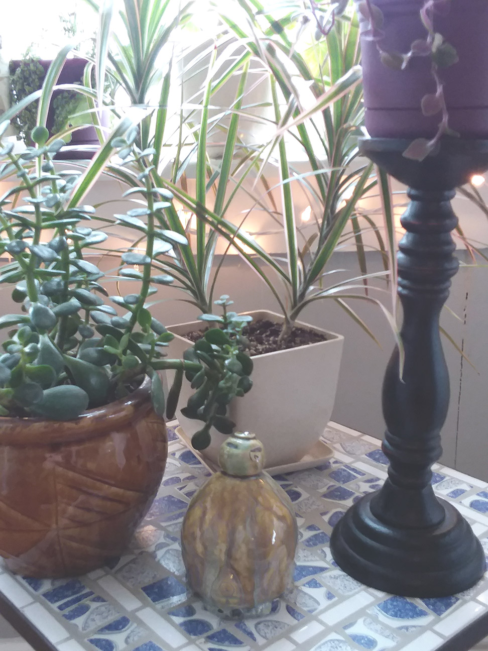 A Garden Goddess Window: Indoor Gardening to Heal the Winter Blues - livingbewitchingly.com